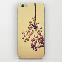 Autumn Life (IV) iPhone & iPod Skin