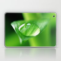 Bamboo with water drops pictures Laptop & iPad Skin