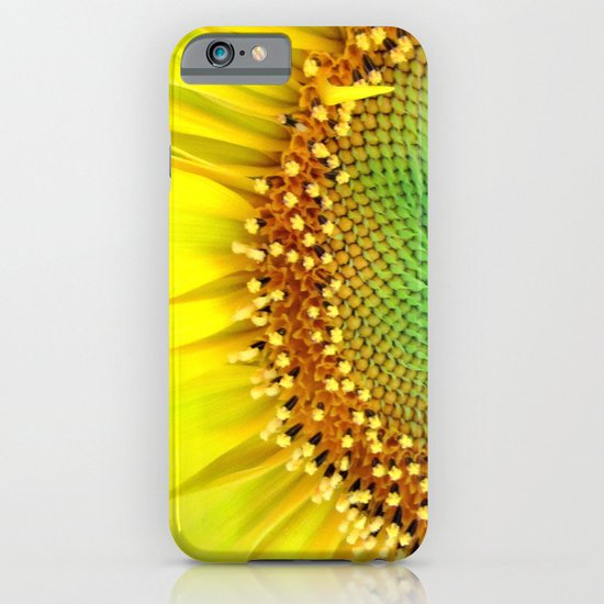 Sunflower from Seed iPhone & iPod Case
