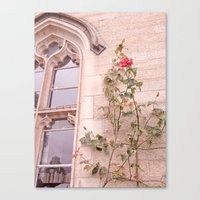 Rose Window Canvas Print