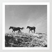 Pryor Mountain Wild Must… Art Print