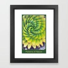Patterns of Nature - succulent I Framed Art Print