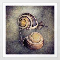 The Yin and Yang of snails .... Art Print