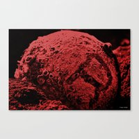 R the Red Planet Canvas Print