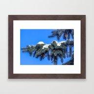 The Branch Of Spruce An… Framed Art Print