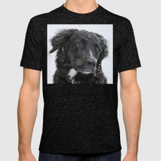 Black Dog In The Snow Mens Fitted Tee Tri-Black SMALL