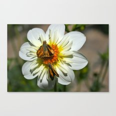 Winged Flower 2 Canvas Print