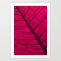 Leaf Art Print