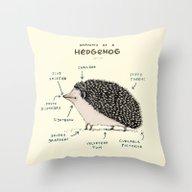 Anatomy Of A Hedgehog Throw Pillow