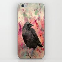 In Colors iPhone & iPod Skin