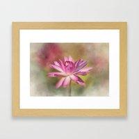 Blushing Pink Framed Art Print