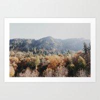fall Covered Mountain Art Print