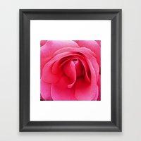 Just A Rose Framed Art Print