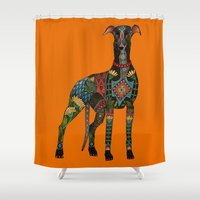 greyhound orange Shower Curtain