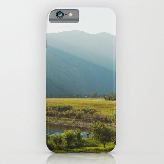 Wading Deer iPhone & iPod Case