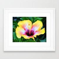 Hibiscus I Framed Art Print