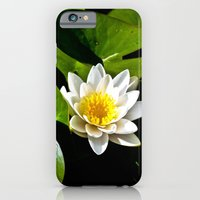 Pond Lilly iPhone 6 Slim Case