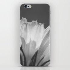 Sweet Petals (Monochrome) iPhone & iPod Skin