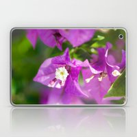 Bouganvilla Beauty Laptop & iPad Skin