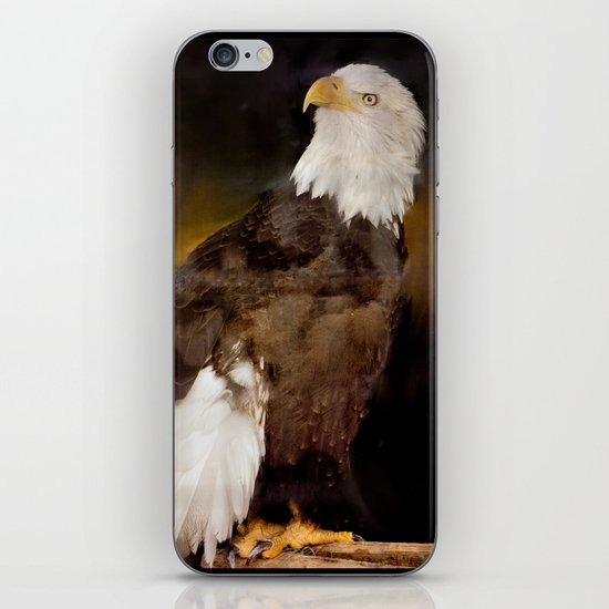 American Eagle iPhone & iPod Skin