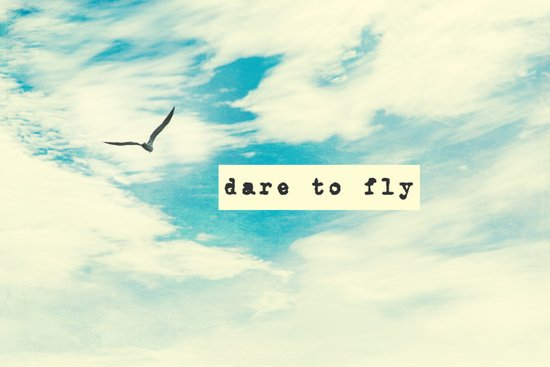 Dare to Fly II Art Print
