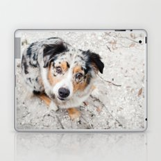 Australian Shepherd Laptop & iPad Skin
