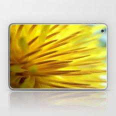 Dandelion Macro Laptop & iPad Skin