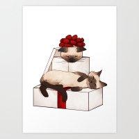 December Siamese Art Print