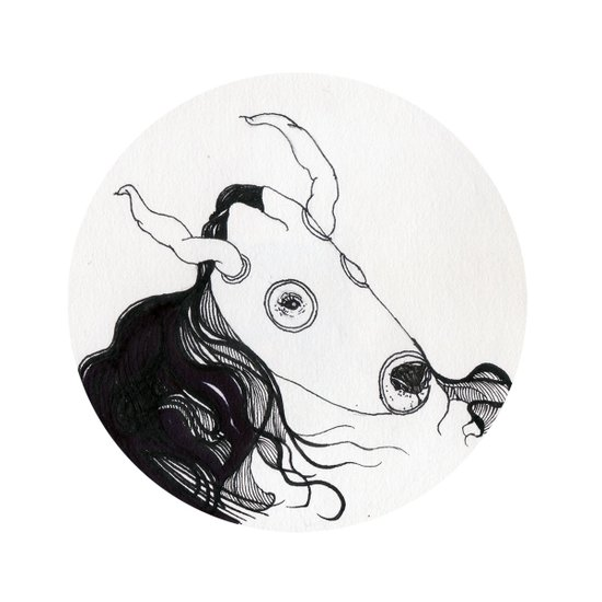 bull horse Art Print