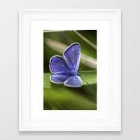 Beautiful Blue Framed Art Print