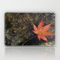 Japanese Maple Leaf 1 Laptop & iPad Skin