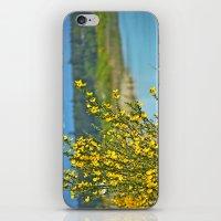 beautiful bc iPhone & iPod Skin
