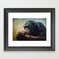 Chimpanzee Framed Art Print