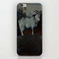 La Capra iPhone & iPod Skin