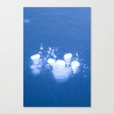 Frozen Air Canvas Print