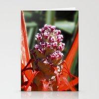 Succulent Blossom I Stationery Cards
