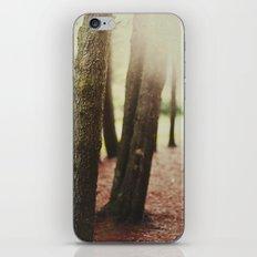 LAST GLOW. iPhone & iPod Skin