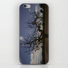 Ficus Carica iPhone & iPod Skin