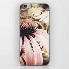 summer magic iPhone & iPod Skin