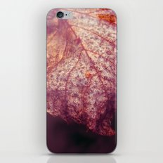 water leaf iPhone & iPod Skin
