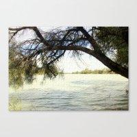The Murray River - Austr… Canvas Print