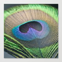Peacock Eye Canvas Print