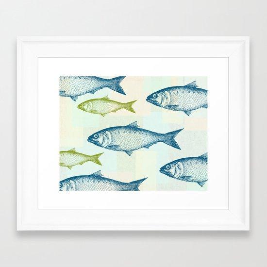 Vintage Fish Framed Art Print
