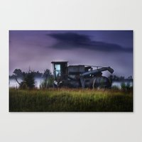 Cotton pickin' Canvas Print
