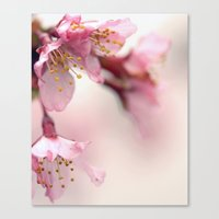 Gentle Canvas Print