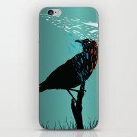 At the Birds Eye  iPhone & iPod Skin