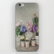 longing for springtime iPhone & iPod Skin