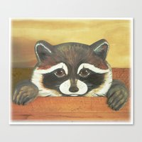 """Canvas Print featuring Raccoon """"Here's Looking at YOU"""" by Will Kay Studios"""