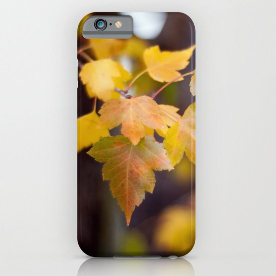 Autumn Yellow iPhone & iPod Case