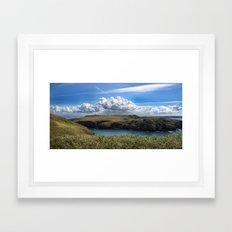 Skomer Framed Art Print